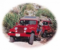 Arizona Desert Mountain Jeep Tours